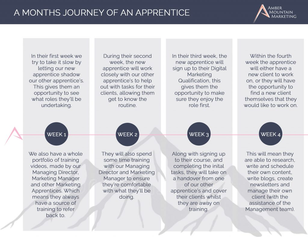 First Month Journey of An Apprentice | Marketing Apprenticeship | Digital Marketing Soultions | Amber Mountain Marketing